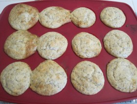 lemon poppyseed muffins 08