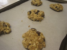 Oatmeal raisin 02